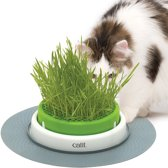 Cat-it kattengras planter senses 2.0