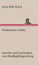 Wallensteins Antlitz