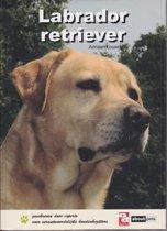 Labrador Retriever - OD Kennis & Advies boek
