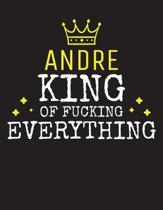 ANDRE - King Of Fucking Everything