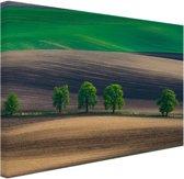 Velden Oost-Europa Canvas 80x60 cm - Foto print op Canvas schilderij (Wanddecoratie)