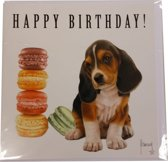 Comello - Kaart - Franciens katten - Happy Birthday! - Hond