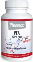 Dier Pharmox Pea Puur - 60 capsules