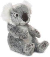 WWF Koala - Knuffel - 15 cm