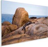 Kliffen langs de oceaan in het Nationaal park Cabo Polonio in Uruguay Plexiglas 30x20 cm - klein - Foto print op Glas (Plexiglas wanddecoratie)