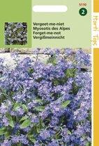 Hortitops Zaden - Myosotis Alpestris Blauw