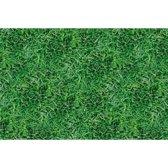 Voetbal Tafelkleed Gras