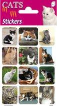 Stickers Katten 3 vellen