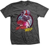 Ant Man And The Wasp - Circle heren unisex T-shirt donkergrijs - M