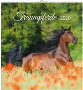 Paarden Kalender 2020