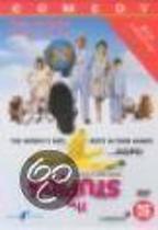 Stupids (dvd)