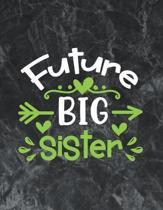 Future Big Sister: The best week by week pregnancy journal notebook