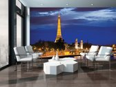 The Eiffel Tower Photo Wallcovering