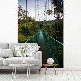 Fotobehang vinyl - De groene hangbrug tussen de bomen in het Bosque Nuboso Monteverde breedte 180 cm x hoogte 270 cm - Foto print op behang (in 7 formaten beschikbaar)