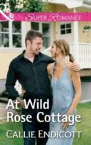 At Wild Rose Cottage (Mills & Boon Superromance) (Montana Skies, Book 2)