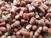 Glaskralen / kralen roodbruin mix ca. 1000 gram