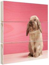 Konijnen voor roze muur Hout 80x60 cm - Foto print op Hout (Wanddecoratie)