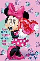 Disney Minnie Mouse Fleeceplaid - 100 x 150 cm - Roze