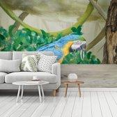 Fotobehang vinyl - Deze blauwkeelara komt uit de jungle breedte 350 cm x hoogte 260 cm - Foto print op behang (in 7 formaten beschikbaar)