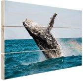 Springende walvis met regenboog Hout 80x60 cm - Foto print op Hout (Wanddecoratie)