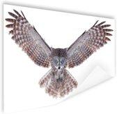 Vliegende uil Poster 120x80 cm - Foto print op Poster (wanddecoratie woonkamer / slaapkamer) / Dieren Poster