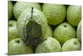De groene harde buitenkant van de sappige guave Aluminium 90x60 cm - Foto print op Aluminium (metaal wanddecoratie)