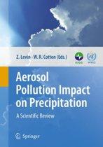 Aerosol Pollution Impact on Precipitation