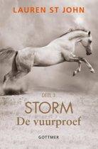 Storm 3 - De vuurproef 3