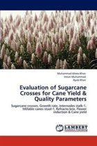 Evaluation of Sugarcane Crosses for Cane Yield & Quality Parameters