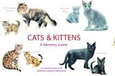 Cats & kittens: a memo game