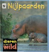 Dieren in het wild - Nijlpaarden