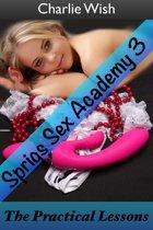 Sprigs Sex Academy 3