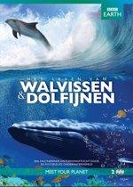 BBC Earth - Het Leven Van Walvissen En Dolfijnen