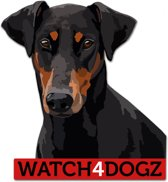 Dobermann sticker (set van 2 stickers)