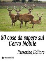 80 cose da sapere sul Cervo Nobile