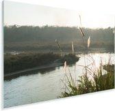 Zon schijnt op het riet en de rivier van het Nationaal park Chitwan in Nepal Plexiglas 90x60 cm - Foto print op Glas (Plexiglas wanddecoratie)
