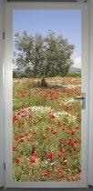 Deurposter 'Olijfboom' - deursticker 75x195 cm