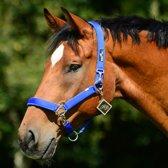 Halster EQU-ALL Nylon; Pony; Royal Blue