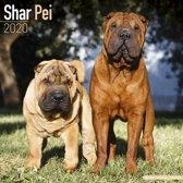 Shar Pei Calendar 2020
