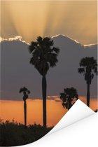 Zonsondergang in het natuurreservaat Selous in Tanzania Poster 60x90 cm - Foto print op Poster (wanddecoratie woonkamer / slaapkamer)