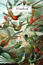 Notebook: Vintage Nature Journal Featuring Tropical Hummingbirds By Haeckel (6 x 9 Lined Notebook, 110 pages)