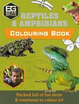 Bear Grylls Colouring Books