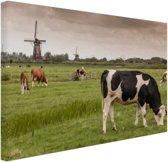 FotoCadeau.nl - Grazende koeien op een dijk Canvas 80x60 cm - Foto print op Canvas schilderij (Wanddecoratie)