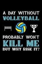 A Day Without Volleyball Probably Won't Kill Me But Why Risk It?