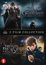 DVD cover van Fantastic Beasts and Where to Find Them - 1 & 2