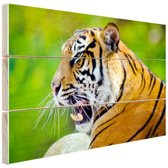 Brullende tijger Hout 60x40 cm - Foto print op Hout (Wanddecoratie)
