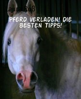 Pferd verladen! Die besten Tipps!
