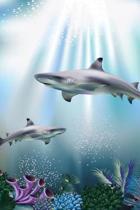 Shark Spotting Journal