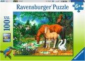 Ravensburger puzzel Idylle bij de vijver - Legpuzzel - 100 stukjes