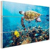 Schildpad bij koraalrif Hout 30x20 cm - klein - Foto print op Hout (Wanddecoratie)